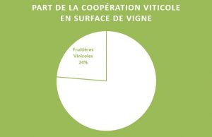 part-cooperatives-surface-jura