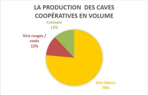 production-caves-volume