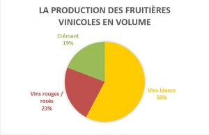 production-fruitières-volume